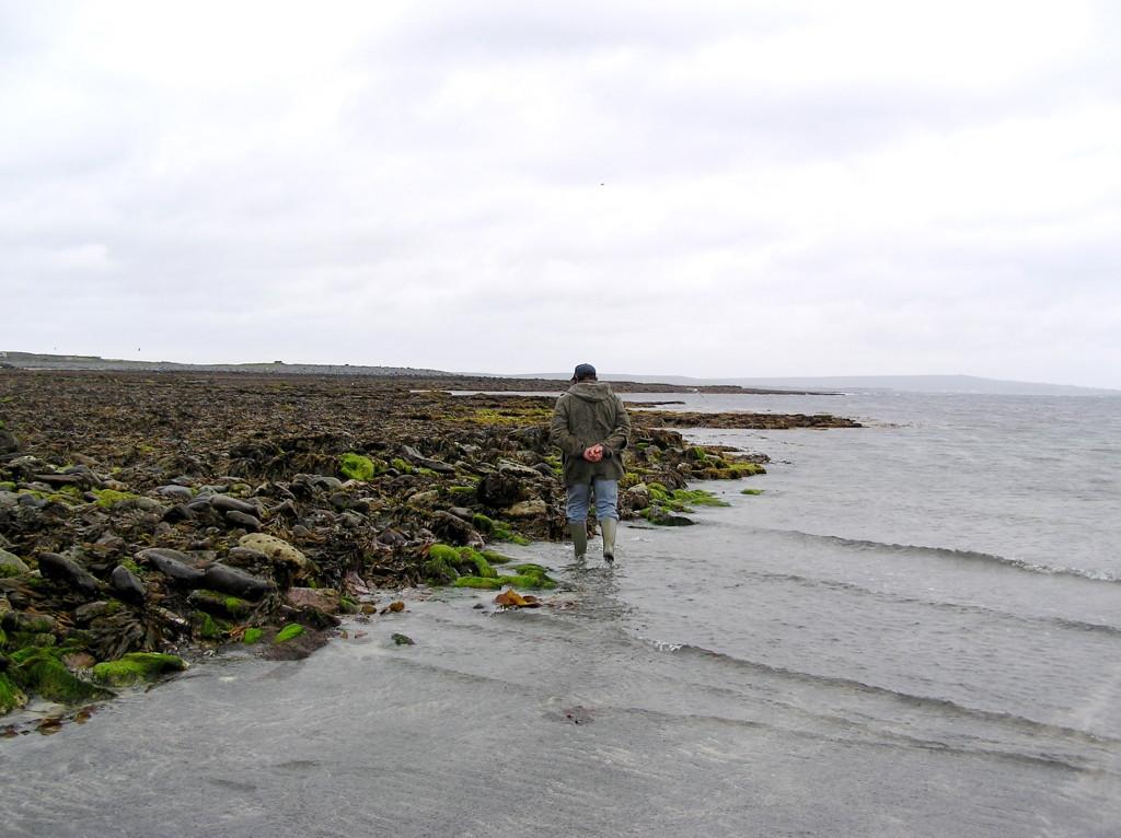 Gathering Seaweed ANU